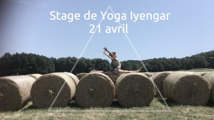 Yoga iyengar printemps